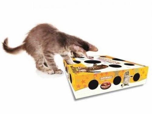Dica de Brinquedinho para Gatos